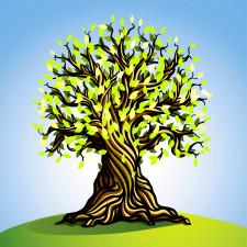 2306816_HiRes_renewal_tree